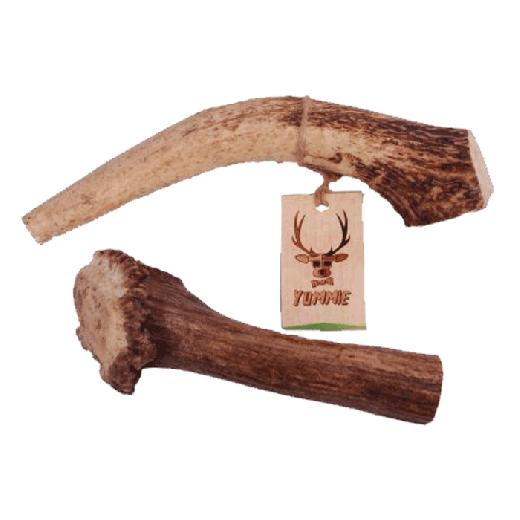 16941 - Zoolekker Deer Antler Extra Large Yummie 180-230gr