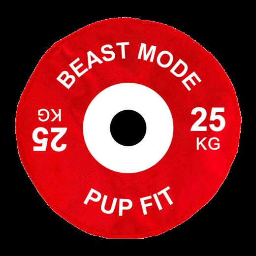 DA726 - 4 pc. per unit Pupfit Weight Large