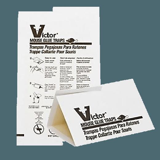 M320 - 72pc. per box - Victor Mouse Glue Trap